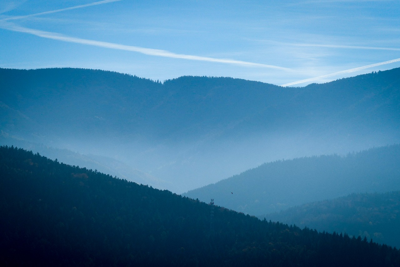 black-forest-1817287_1280
